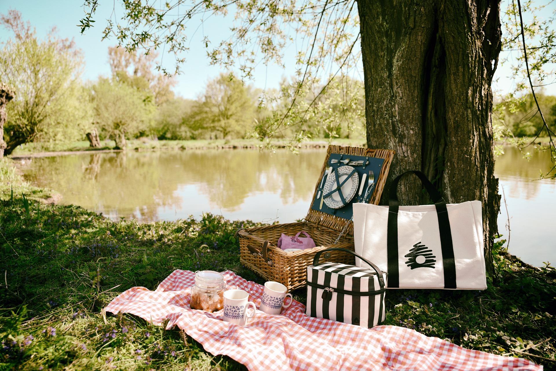 picnic-3474130_1920